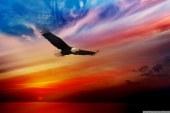 روز استقلال ایالات متحده آمریکا