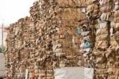 زبالههایی که طلا شدند/ صادرکننده ضایعات کارتن شدیم