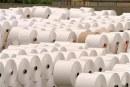 تنها ۳ هزار تن کاغذ از۴۲ هزار تن کاغذ تأیید شده وزارت ارشاد به کشور وارد شد